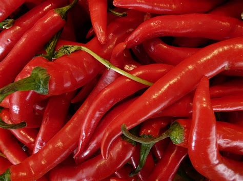 pepperoni chili paprika  photo  pixabay