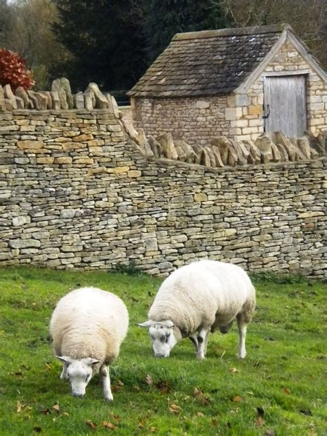 sheep stone interiors sheep stone 17 best images about garden gates fences and stone walls