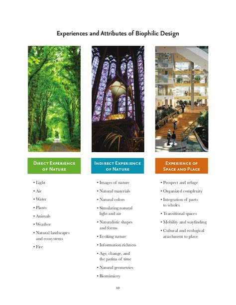 patterns in nature topic test biophilic architecture or biophilic architecture and
