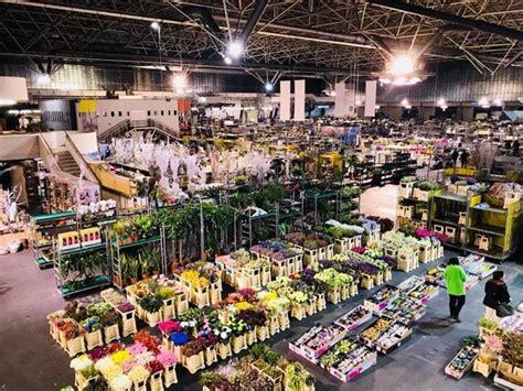 mercato dei fiori di pescia fiorecolore mercato dei fiori pescia pt