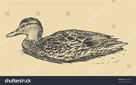 duck shooting and sketches classic reprint books duck retro style vector illustration stock vector