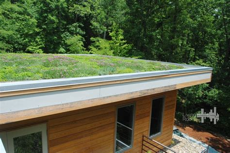 pin by living roofs inc on living roofs inc residential green ro