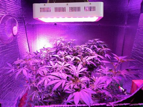 grow led le global led grow lights industry 2016 market research