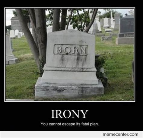Irony Memes - funny irony memes google search bitter irony pinterest memes sarcasm meme and funny signs