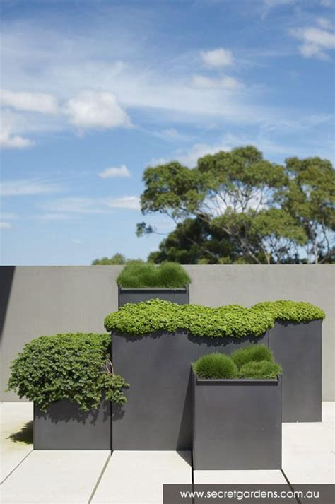 Modern Garden Planters by Gardens Growing Grass And Terrace On