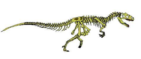 dinosauri volanti arcosauri e dinosauri