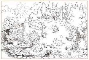 forest coloring pages deciduous forest coloring sheets coloring deciduous