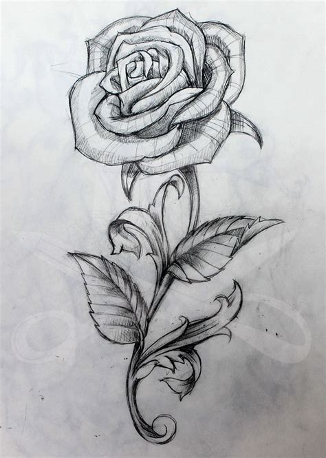 tattoo rose sketch 25 best ideas about tattoos on