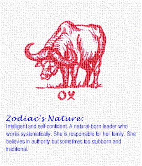 chinese zodiac ox pictures pics images and photos for