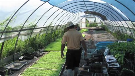 cost of building a green home building a greenhouse youtube