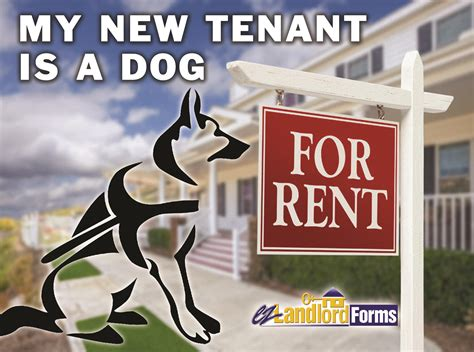 My New Renter my new tenant is a ez landlord forms