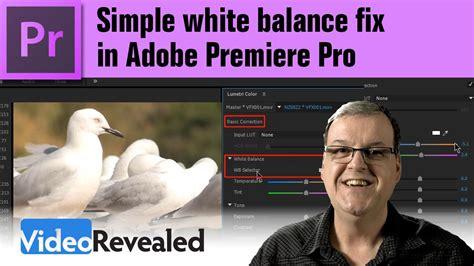 adobe premiere pro white balance week in premiere 11 11 16 premiere bro