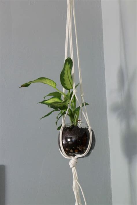 ceiling plant hooks hold all large steel ceiling hook