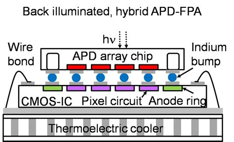 avalanche photodiode là gì avalanche photodiode efficiency 28 images photodetector ppt design of high quantum