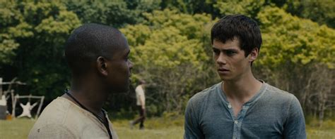 download film maze runner mp4 download the maze runner 2014 yify torrent for 720p mp4