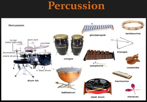 what is a section in music percussion mcclelland college music department