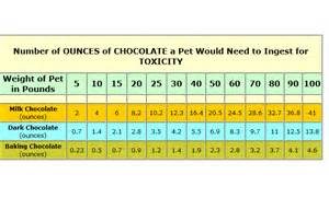 chocolate toxicity links westbayanimalhospital vetstreet
