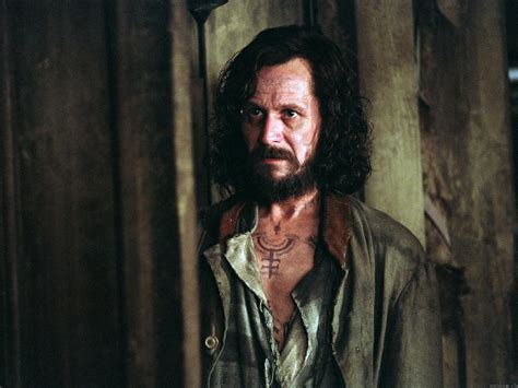 sirius black sirius black images sirius black wallpaper hd wallpaper and background photos 32913943