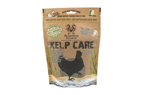 alimentazione naturale galline ovaiole kelp care chicken