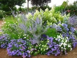 avoir un jardin fleuri toute l 233 e sans connaissance