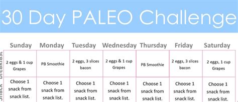 30 day diet plan challenge diary of a fit mommy30 day paleo challenge diary of a