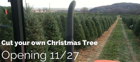 chuck hafners christmas trees chuck hafner s tree farm