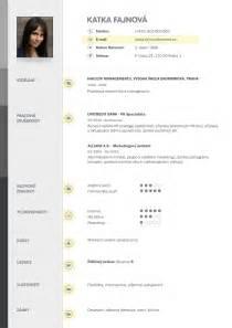 vzor CV   Curriculum Vitae   Pinterest