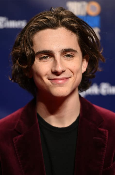 New Year Home Decor by Timoth 233 E Chalamet Things To Know About Your New Hollywood