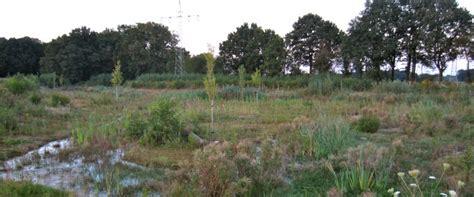 garten landschaftsbau herten erdbau suden