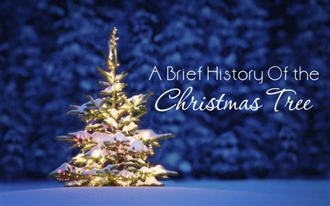 a brief history of the christmas tree roberts liardon