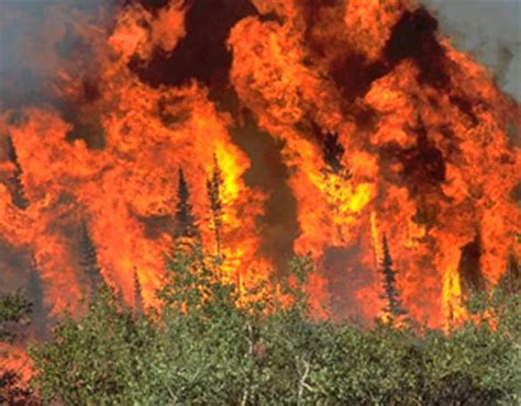florida wildfires clearing warming trend into weekend 6 metro tornadoes so