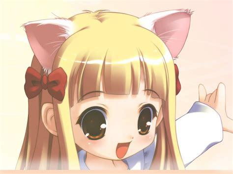 wallpaper anime cat girl anime cat girl wallpapers 62 wallpapers hd wallpapers
