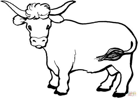 hereford cow coloring page ausmalbild kuh schaut sich um ausmalbilder kostenlos