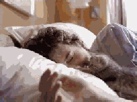 bed gif cute kitten gifs get the best gif on giphy