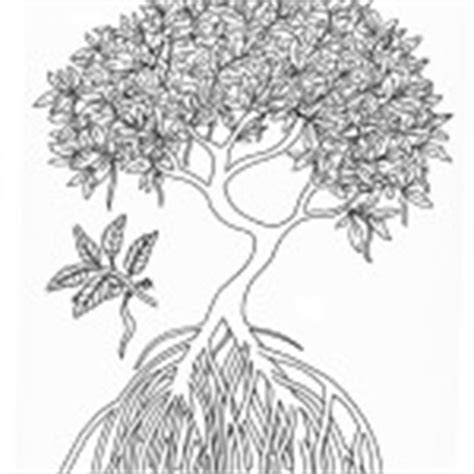 mangrove tree coloring page trees leaves coloring nature