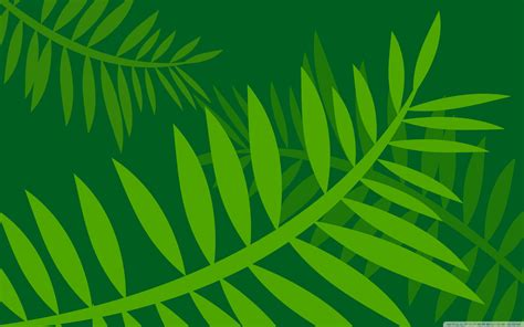 jungle leaves vector art  hd desktop wallpaper
