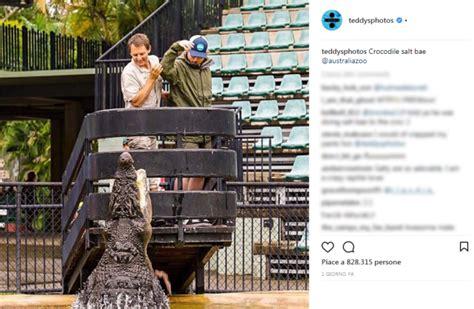 ed sheeran zoo ed sheeran sfama un coccodrillo imitando lo chef nusret
