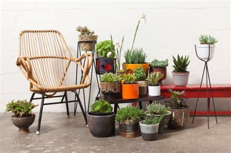 indoor plant display 99 great ideas to display houseplants indoor plants
