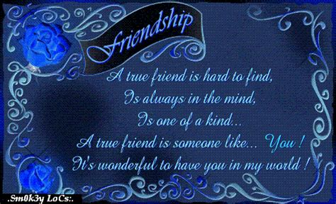 True Finder A True Friend Is To Find Pictures Photos And Images For