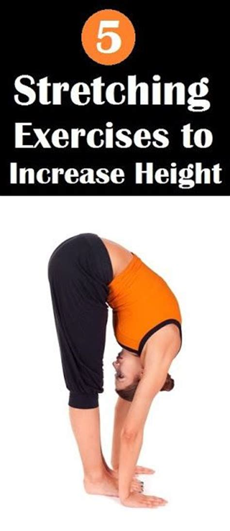 5 easy workouts to increase height workouts and workout
