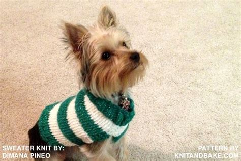 free pattern dog sweater 44 best images about knitting patterns for dogs on