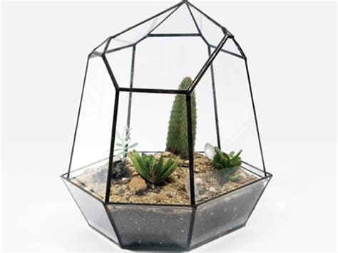 Handmade Terrariums - handmade glass terrariums by score and solder