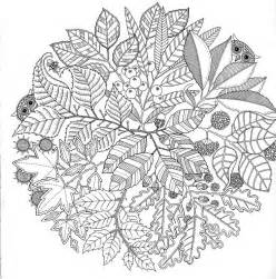 secret garden coloring pages 1000 images about colouring pages on coloring