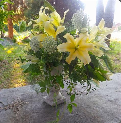 bathtub gardens lilies botanical brouhaha
