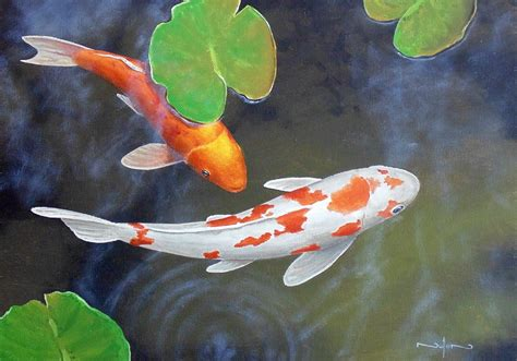 koi pond thediabeticspoon drawing realistic and stylish pencil drawing made easy learn pencil drawing the easy way