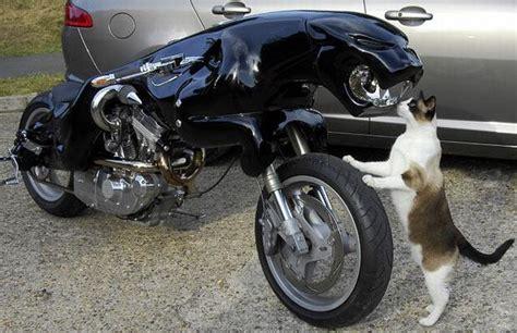 moto jaguar un moto jaguar d0wn