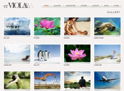 drupal themes photography photography drupal themes for gallery images symphonythemes