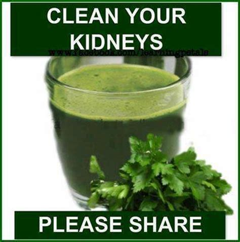 Cilantro Kidney Detox Recipe by Miracle Kidney Cleanse