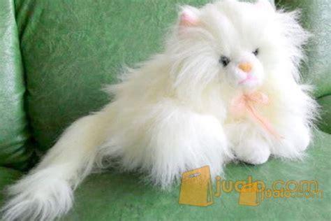 boneka kucing anggora putih jakarta pusat jualo