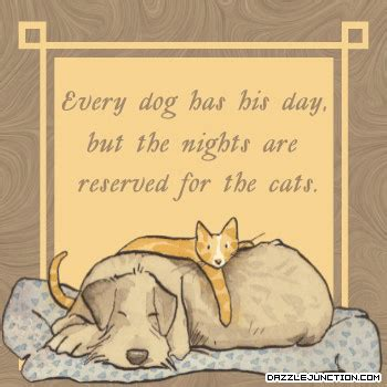 every has his day every has his day but the nights are reserved for the cats